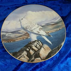 Vintage Hamilton Collection Gyrfalcon Plate